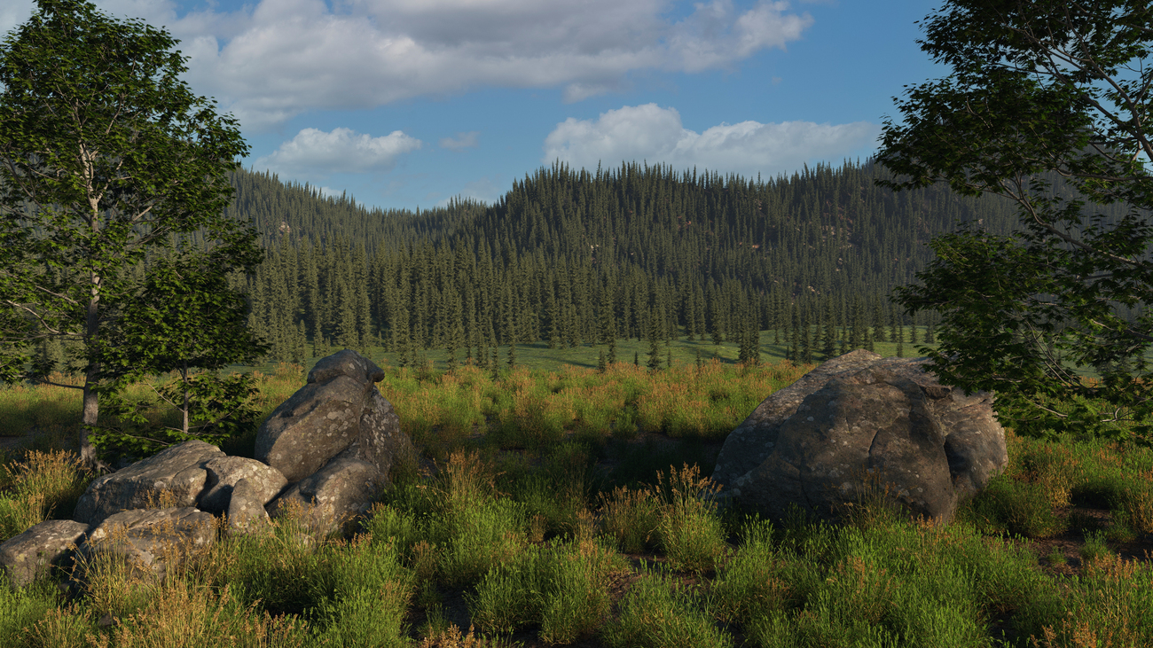 forest mountains by iborg64