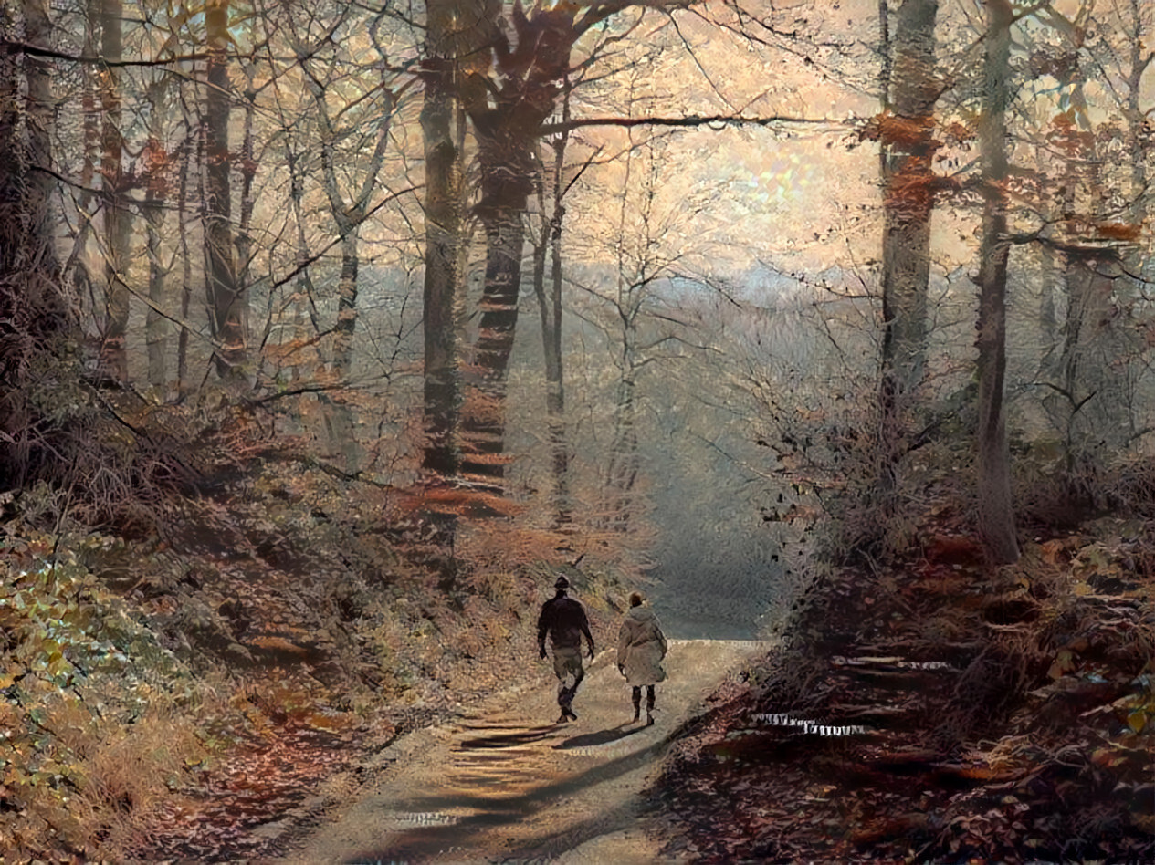 Two people walking in the wood.