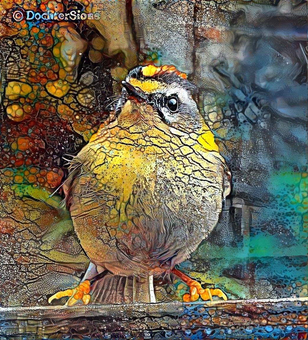 Common firecrest by dochtersions