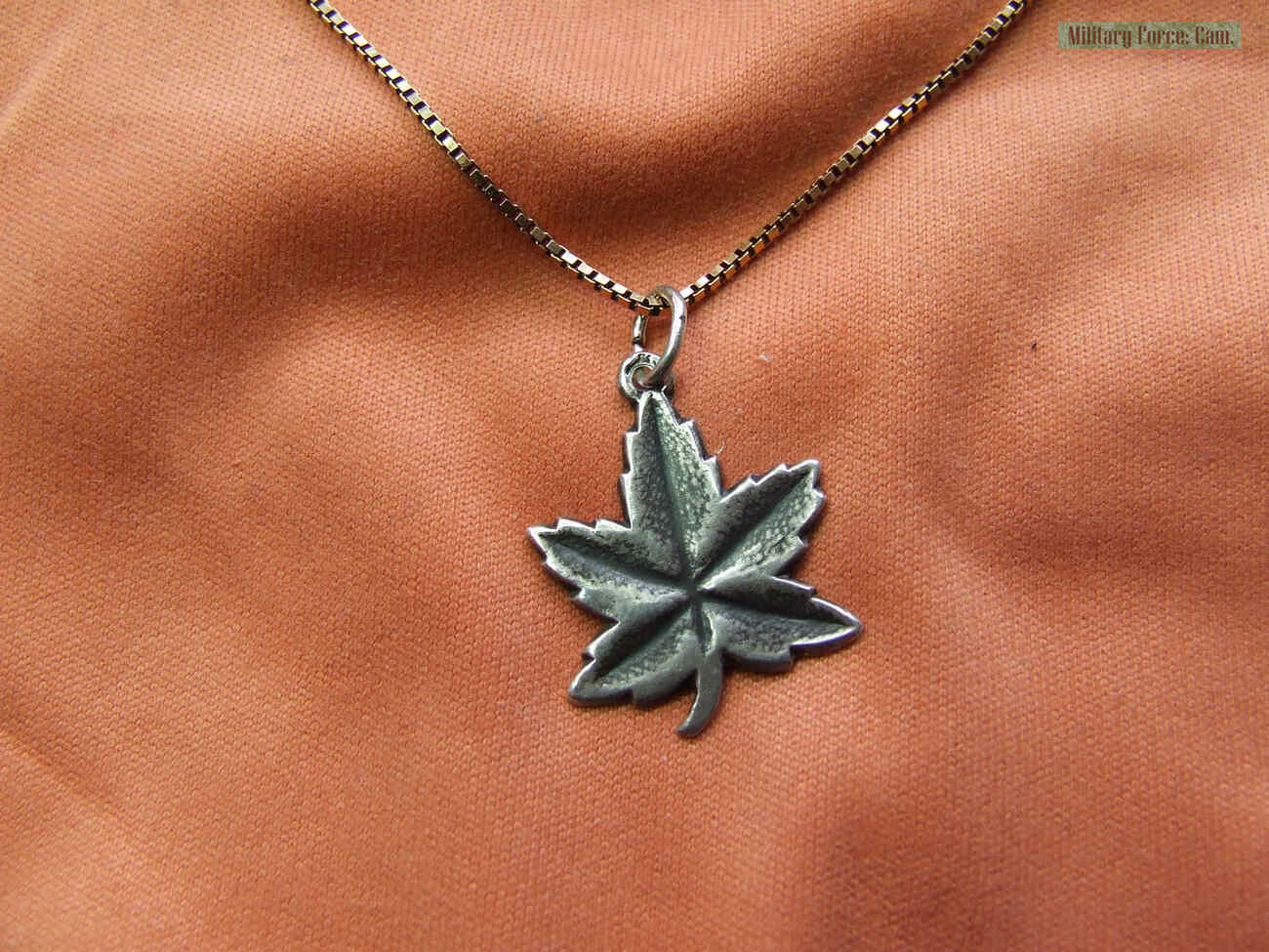 Maple leaf. by vechtdalcollege