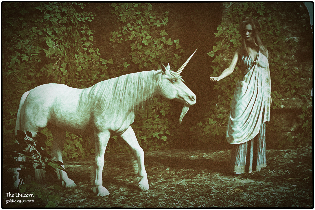 The Unicorn by goldie