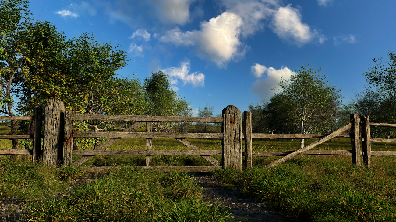 wooden gate by iborg64