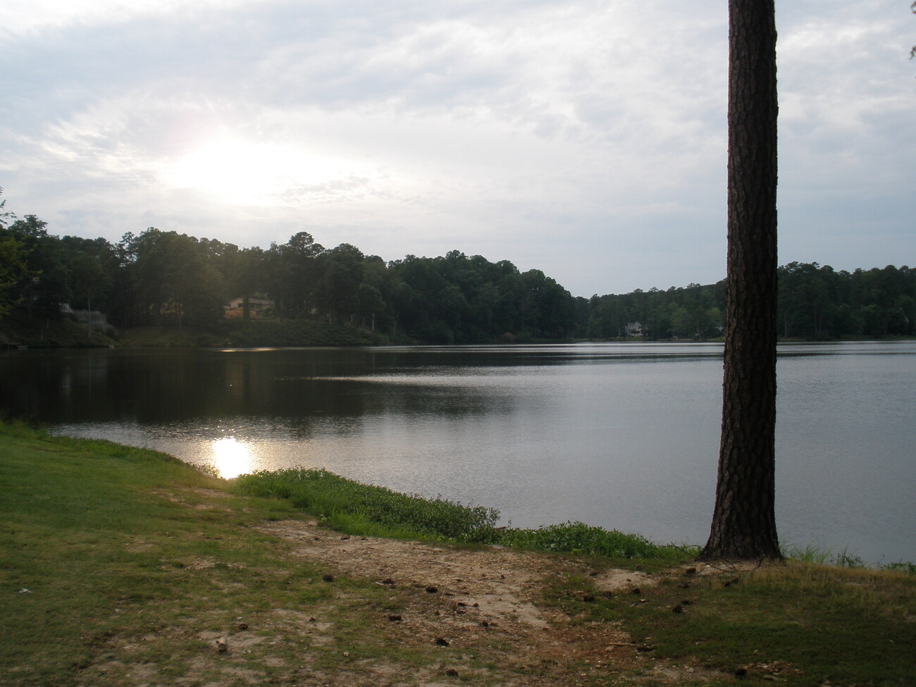 Serenity by the Lake