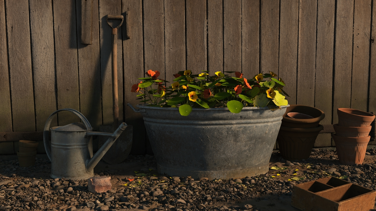 Flowers in a tin bath by iborg64