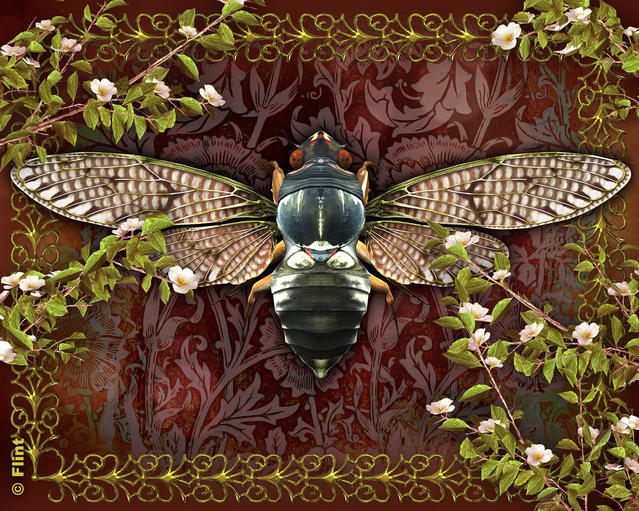 Beauty of the Large Brown Cicada by Flint_Hawk