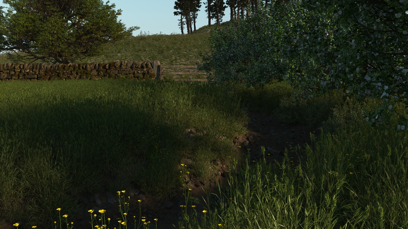 A small Path by iborg64