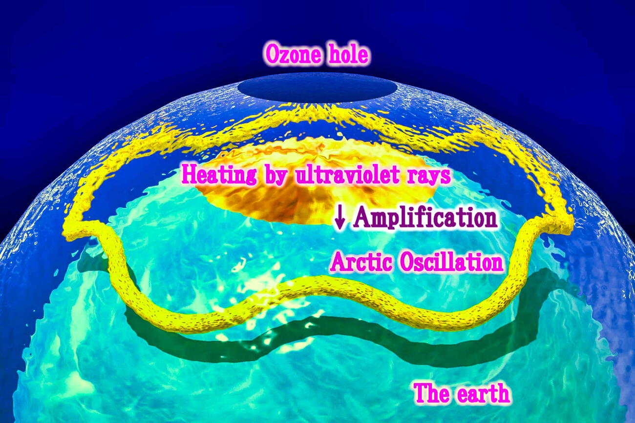 Amplification of Arctic Oscillation by the ozone h