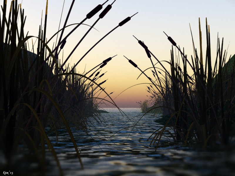 Sunset in the Bulrushes by KarenJ