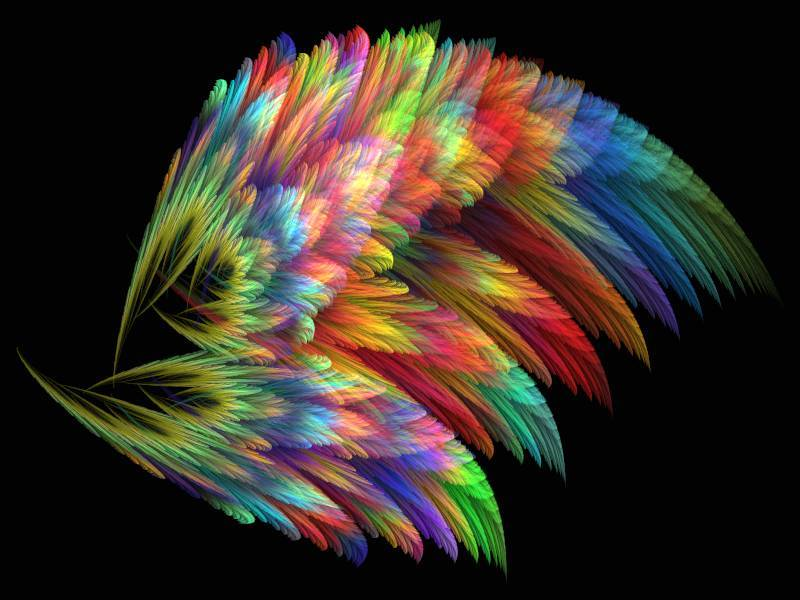 Fantasy Feathers.
